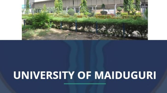UNIMAID Admission List 2018/ 19 is Out – Check 1st & 2nd Batch