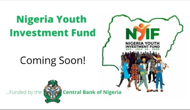 Nigeria Youth Investment Fund Website Portal for Application